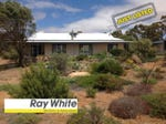 679 Hillcroft Road, Jelcobine, WA 6306