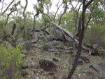 Lot 7, 'Silent Grove' Gulf Road, Torrington, NSW 2371