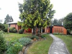 197 Elephant Pass Road, St Marys, Tas 7215