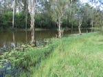 Fortis Creek Fire Trail, Dilkoon, NSW 2460