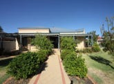 9 Sanguine Way, Atwell, WA 6164