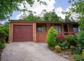 41 Cook Road, Wentworth Falls, NSW 2782