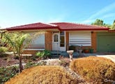 110 Northbri Avenue, Salisbury East, SA 5109