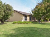 60 Vincent Road, Lake Albert, NSW 2650