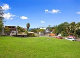 6 Young Street, Coledale, NSW 2515