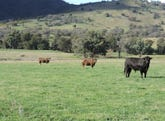 Greenmantle Valley Greenmantle Road, Bigga, NSW 2583