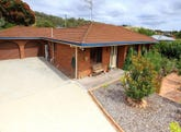 67 Pitt Avenue, Riverside, Tas 7250