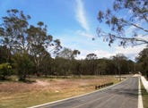 Lot 7, Dicameron Court, Thornlands, Qld 4164