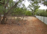 - Allotment 45 Seventh Street, Koolunga, SA 5464
