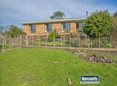 69 Linton Avenue, Heybridge, Tas 7316
