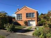 3 Lantana Avenue, Newstead, Tas 7250