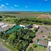 Tropical Paradise Nursery , 67 Bells Road, Woongarra, Qld 4670