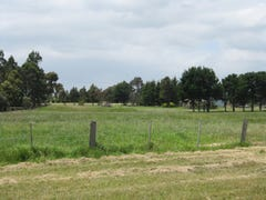 Lot 4-117 Seaspray Road, Longford, Vic 3851