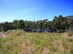 LOT 1 Doodys Hill Road, Port Huon, Tas 7116