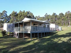 137A Narrows Road, Strathblane, Tas 7109