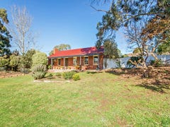 20 Thiele Avenue, Mount Barker, SA 5251