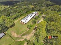 80 Barrenjoey Drive, Ormeau Hills, Qld 4208
