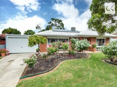 25 Aldrin Crescent, Modbury North, SA 5092