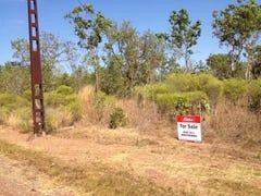 690 Reedbeds Road, Darwin River, NT 0841