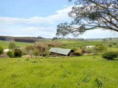 273 Cox's Road, Red Hills, Tas 7304