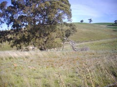 Palmer Rd Beetaloo Valley Via, Laura, SA 5480