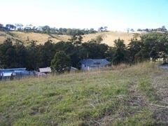 Lot 849 The Eagles Nest 'Tallwoods', Hallidays Point, NSW 2430