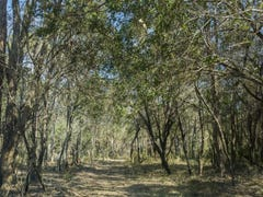 Lot 92 Sandy Swamp Road, Coutts Crossing, NSW 2460