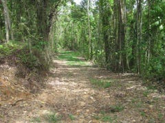 Lot 100 Finlayvale Road, Mossman, Qld 4873