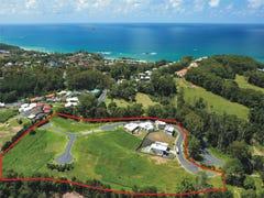 Lot 17 Mitch Ballantine Estate, James Small Drive, Korora, NSW 2450