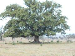 Umbiram School Road, Umbiram, Qld 4352