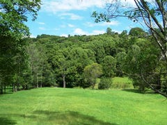 Lot 302 Wongaree Way, Currumbin Valley, Qld 4223