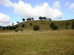 Lot 130 Salisbury Road, Dungog, NSW 2420