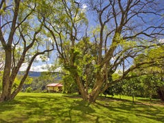904 Darkwood Road, Bellingen, NSW 2454