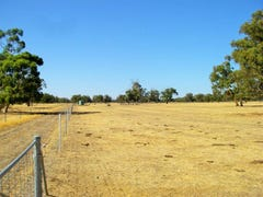 Lot 106 Mogumber Road West, Mogumber, WA 6506