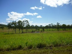 1135 Mt Chalmers Rd, Mount Chalmers, Qld 4702