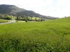 15 Lots Morrison Road, Cedar Creek, Qld 4520