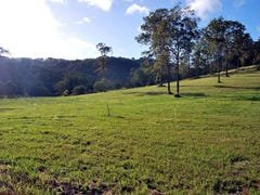 Lot 70 Timberview Estate, Wongawallan, Qld 4210
