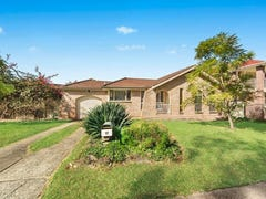 17 Canterbury Road, St Johns Park, NSW 2176