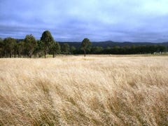 Lot 1 Bryans Gap Road, Tenterfield, NSW 2372