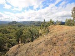 1060 Glens Creek Road, Nymboida, NSW 2460