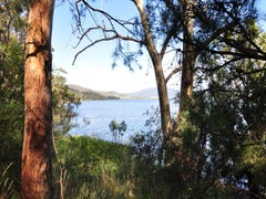 1345 Cygnet Coast Road, Lower Wattle Grove, Tas 7109