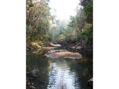 Lot 56 Sportsman Creek Conservation Area, Dilkoon, NSW 2460