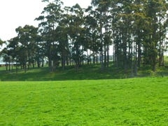 Lot 36 Lennah Drive, Wynyard, Tas 7325
