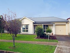 9A Bricknell Street, Magill, SA 5072