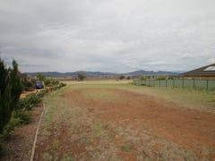 19 Morning View Close, Quirindi, NSW 2343