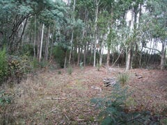 Lot 4, Holmes Road, Ellendale, Tas 7140