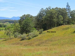 Lot 2, 45 Henry Boultwood Dr, Bellingen, NSW 2454