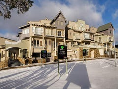 White Crystal 108/9D Great Alpine Road, Mount Hotham, Vic 3741