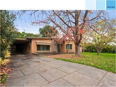 16 Woodmere Avenue, Paradise, SA 5075