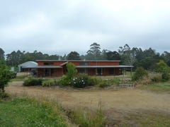 230 Lyons Road, Lapoinya, Tas 7325